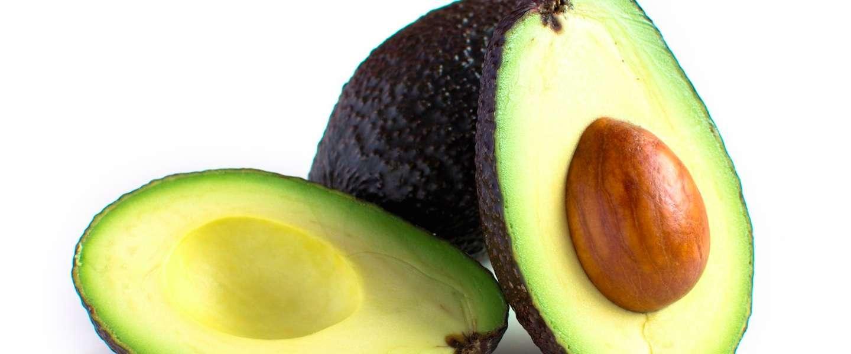 Koortslip te lijf met avocado en gierst