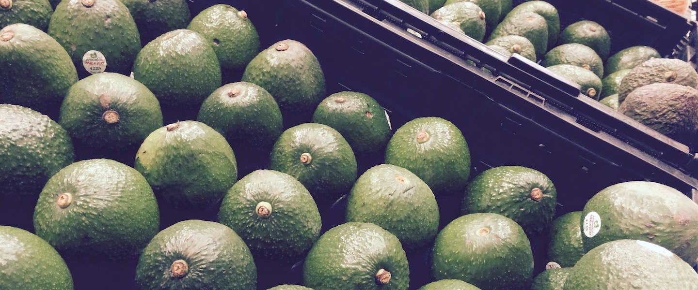 Avocado's: het nieuwe 'groene' goud