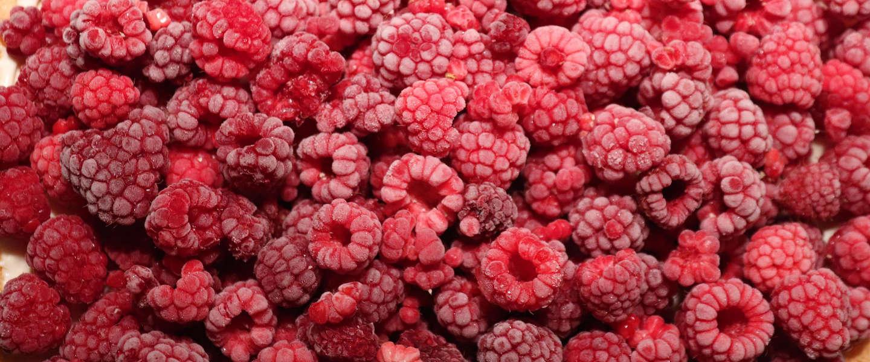 Invriezen fruit levert handig ingrediënt op voor (room)ijs