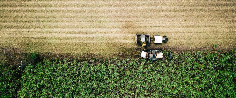 Jaarlijks 400 miljard aan voedsel verloren voor het in de supermarkt komt
