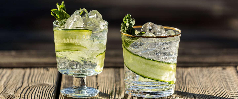 Drie verfrissende cocktails om te maken met alcoholvrije gin