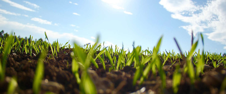 Omzet duurzaam geproduceerd voedsel stijgt met zeven procent