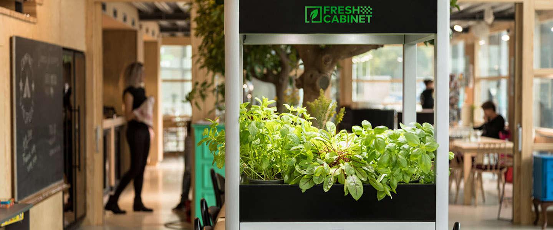 FreshCabinet wil jij ook in de keuken!
