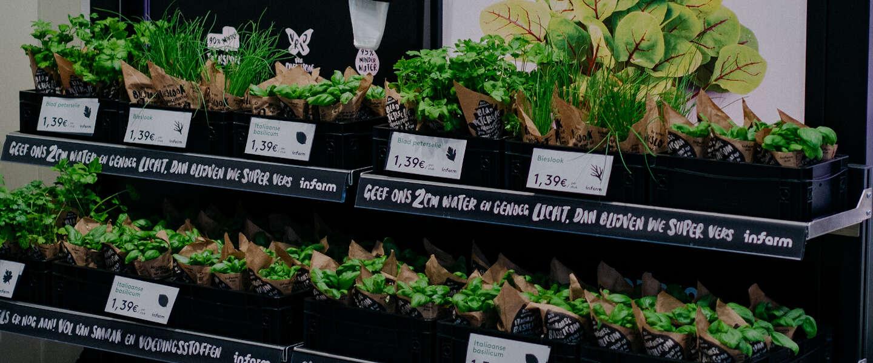 Lokale verse kruiden in supermarkt dankzij Vertical Farms van Infarm