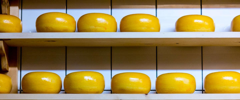Export mozzarella gaat binnen Europa Goudse kaas voorbij