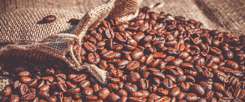 Wakuli koffie: Eerlijke en duurzame kwaliteitskoffie