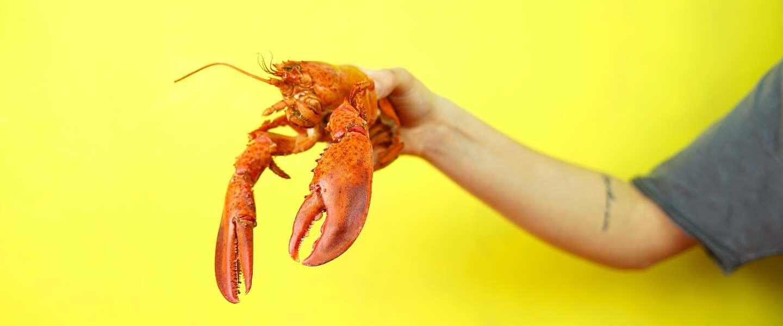 Lobsterfest: Geniet van allerlei bereidingen van kreeft bij Floor17 in Amsterdam