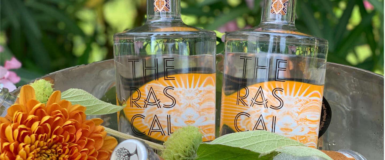 The Rascal Gin heeft een bijzonder smaakvol en ondeugend karakter