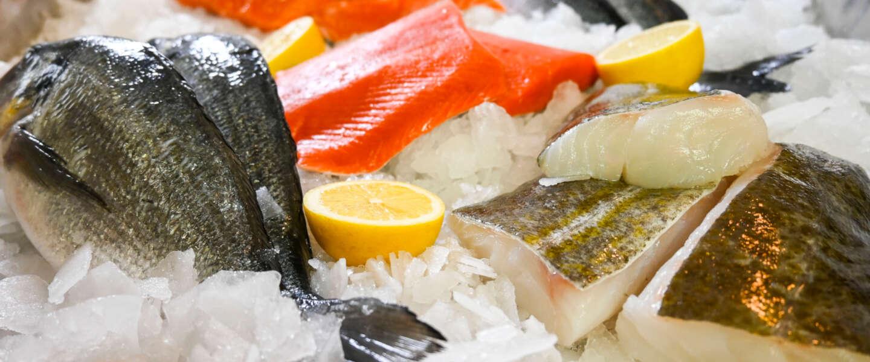 Fish Tales opent nieuwe all-in-one online viswinkel met duurzame verse vis
