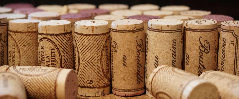 Wijn proeven in de Loire Vallei
