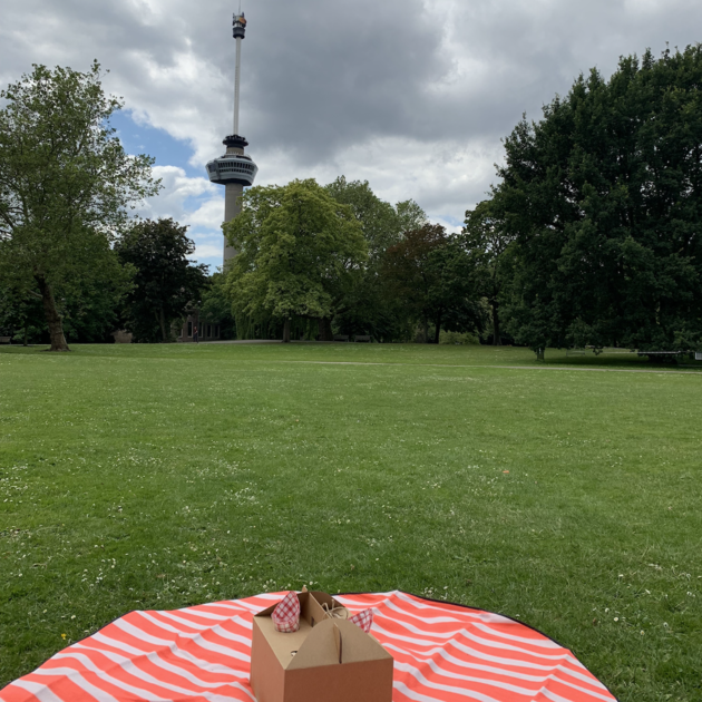 Picknick Euromast