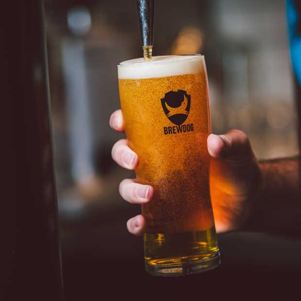 Eerste BrewDog bar van Nederland geopend in Rotterdam