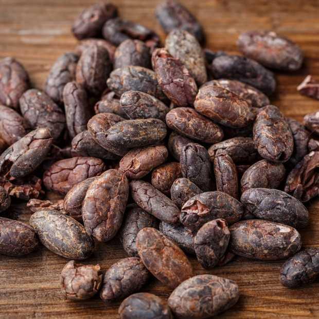 Nederland is een van de grootste spelers in de cacao-industrie ter wereld