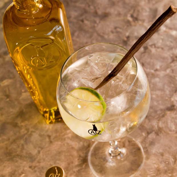 CATZ Dry Gin: aromatisch, krachtig en gebalanceerd