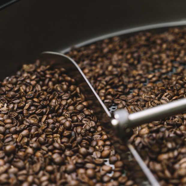 De enige koffiebranderij in Nederland die koffie op hout brandt