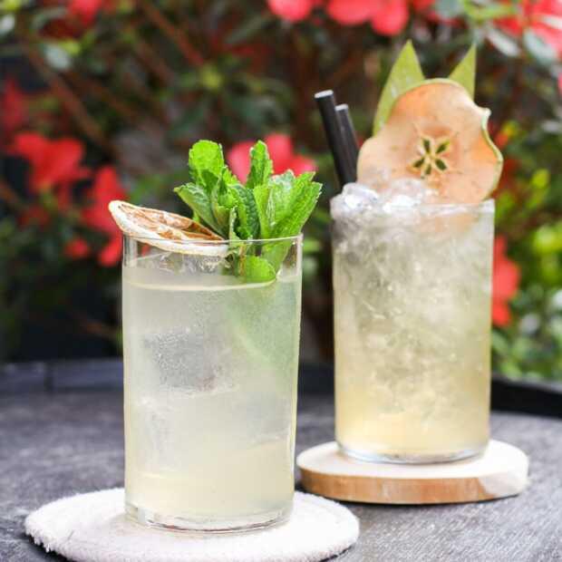 Bewuster genieten van cocktails met de 'Conscious Edition' van de Thuisborrel Club