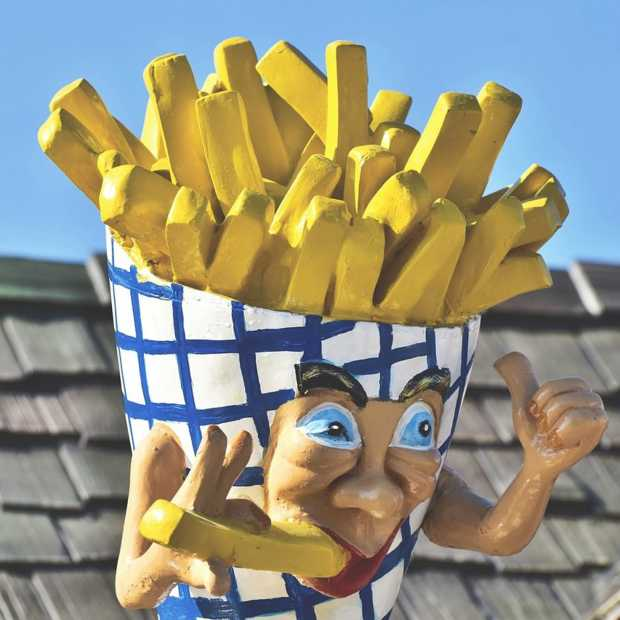 Nationale Frituurgids nieuw naslagwerk met snackbars in Nederland