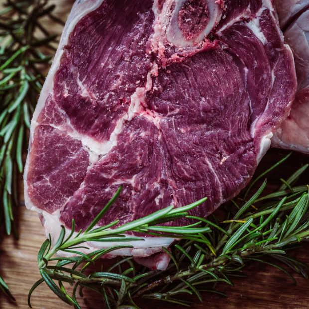 Geen verzoek ingediend voor toelaten kweekvlees in Europa