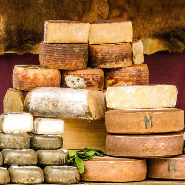 Weer bedrijf met extra focus op plantaardige kaas