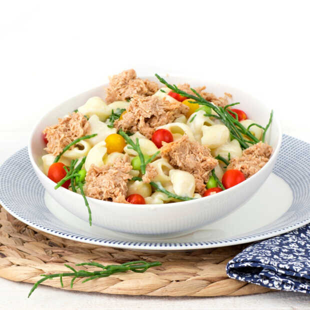 Nederlands bedrijf brengt plantaardige tonijn TuNo op de markt