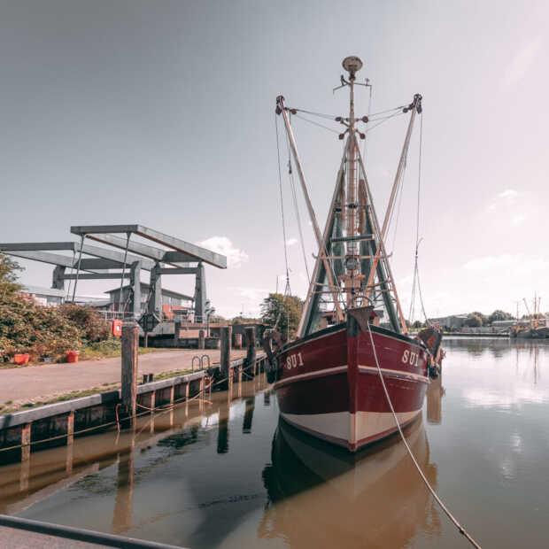 Nederlandse visserij zet goede stappen op het gebied van duurzaamheid