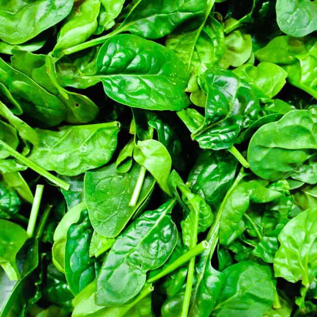 Wetenschappers hebben spinazie geleerd om te e-mailen
