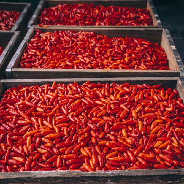 Scorpion sauce, de allerpittigste pepersaus, nu tijdelijk in Nederland verkrijgbaar