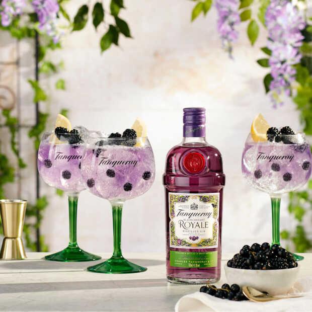 Nieuwe Tanqueray Blackcurrent Royale gin is ideaal te drinken met tonic of prosecco