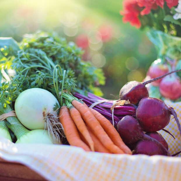 Aandeel van 25% biologisch voedsel in 2030 is utopie voor Nederland
