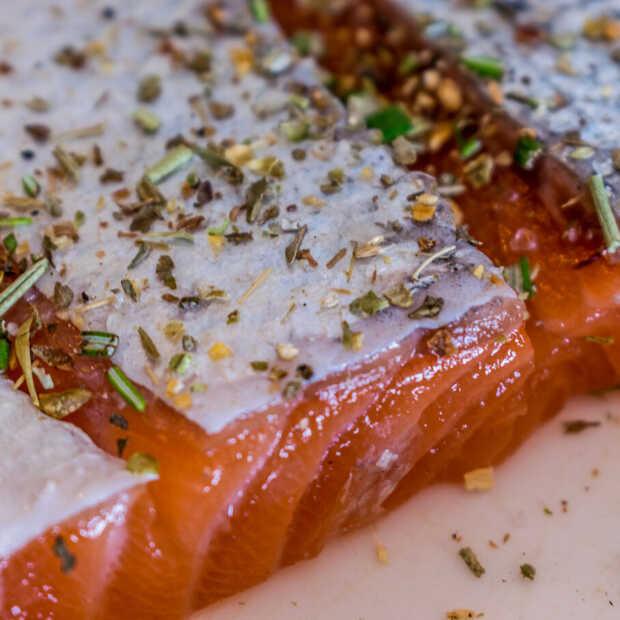 Belgische Van Dissel kookt zalm in vaatwasser tijdens tv-programma